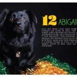 Abigail-Dezembro2014-1