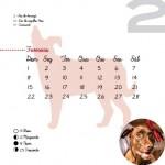 Calendario_2015-6