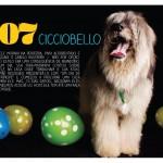 Cicciobello-Julho2014-1