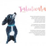 Outubro_Jabuticaba